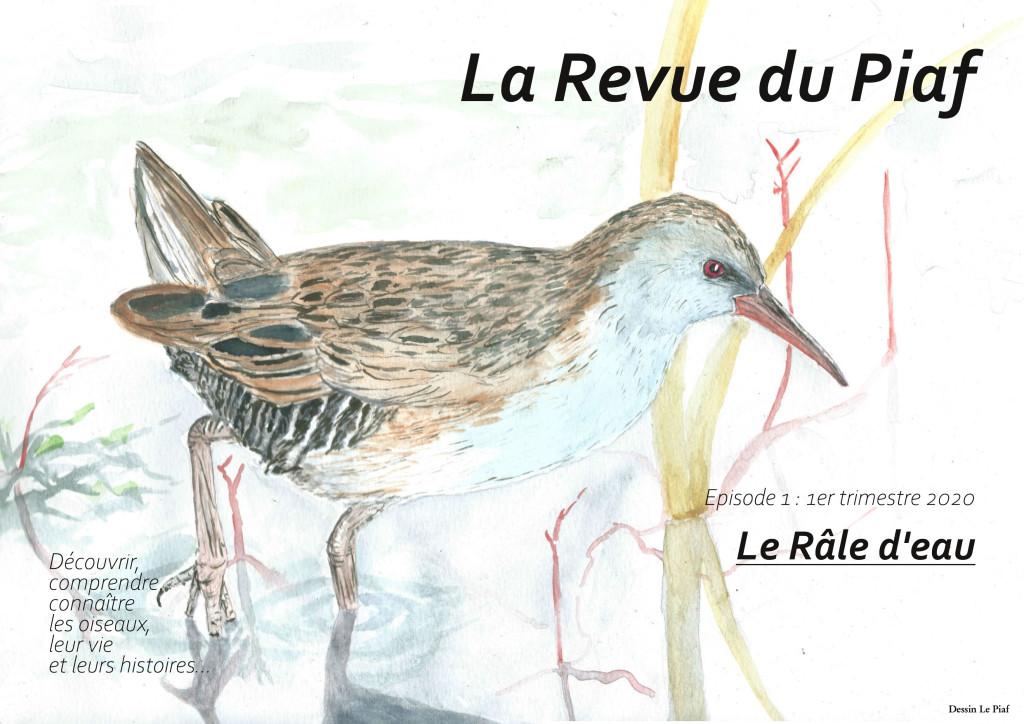 Revue Le Piaf Episode1 Le Râle d'eau-1