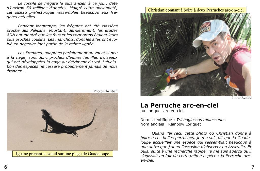 Le piaf info service Christian et Renild en Guadeloupe-4