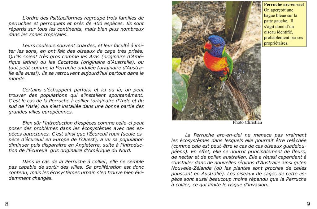 Le piaf info service Christian et Renild en Guadeloupe-5