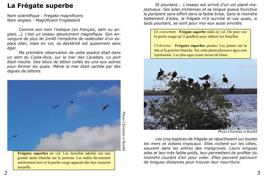 Le piaf info service Christian et Renild en Guadeloupe-2