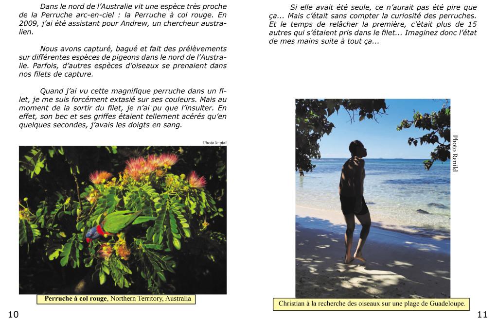 Le piaf info service Christian et Renild en Guadeloupe-6